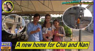 A new home for Chai and Nan