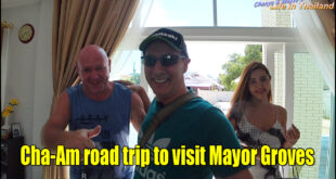 Cha-Am road trip to visit Mayor Groves
