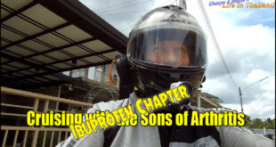 Cruising with the Sons of Arthritis – Ibuprofen Chapter!
